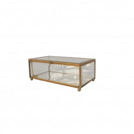 Jewely Glass Box w/ Gold Trim (M)