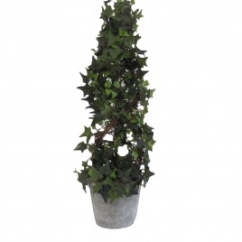 Ivy Cone Topiary Potted Tree