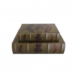 Decorative Antique Paper Book (2pcs/Set)