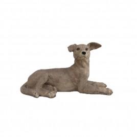 Weimaraner Dog (Lying)