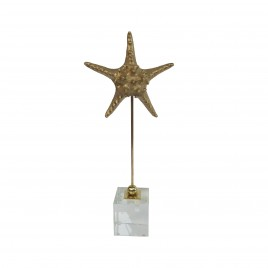 Golden metal starfish display (S)