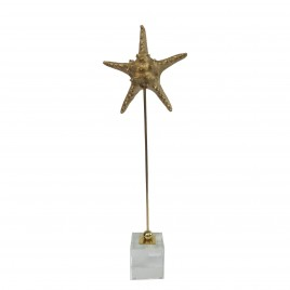 Golden metal starfish display (L)