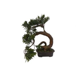 Bonsai Tree (large)