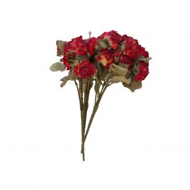 Red Java roses
