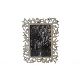 Coral & Shell Silver Metal Frame