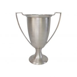 Silver Plated Cup (Large)
