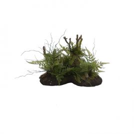 Artificial fern w/moss