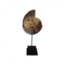 Stone shell w/stand (S)