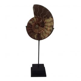 Stone shell w/stand (L)