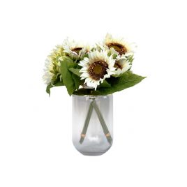 Cream Country Sunflower