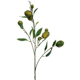 Green Lemon Branch