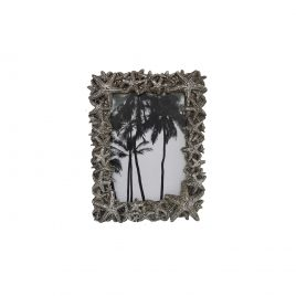 Silver Coral Frame