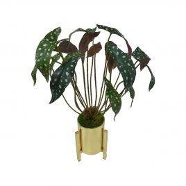 Philodendron Artificial Plant in Gold Planter (M)